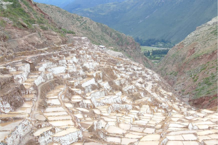 Maras - The Salt Terraces - White Inkagold