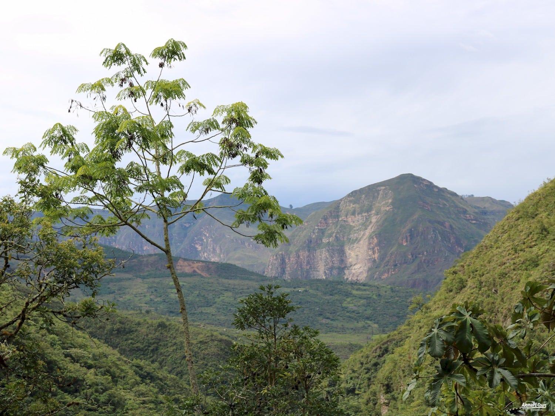 Chachapoyas - Cocachimba - Catarata de Gocta