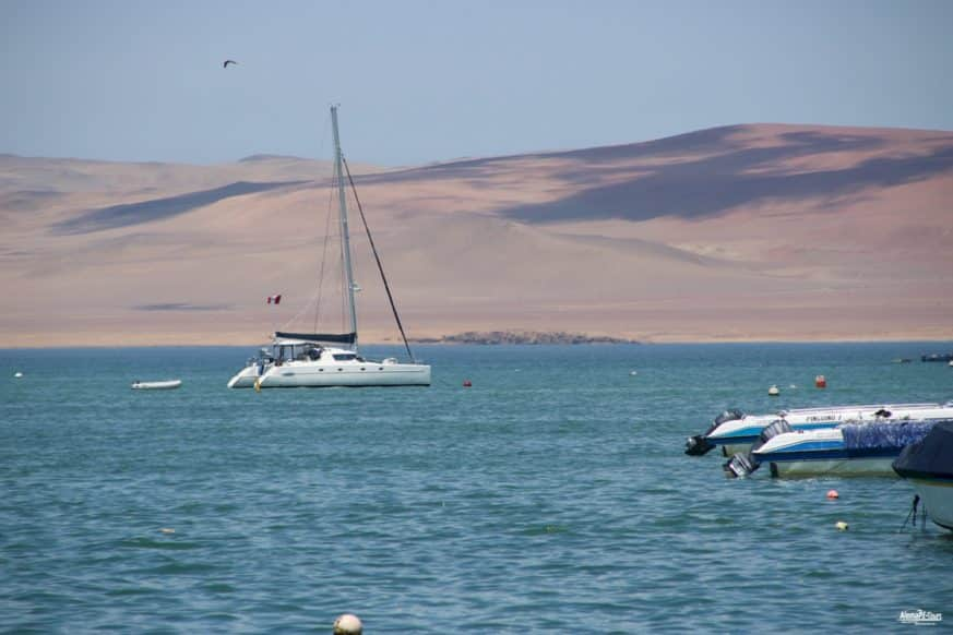 Daytour to Paracas & Ballestas Islands Nature Reserve