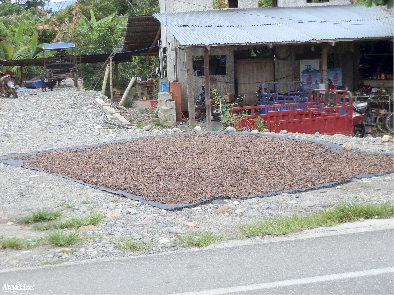 Tarapoto - Anreise