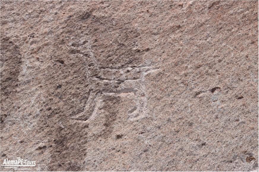 Die Petroglyphen von Toro Muerto