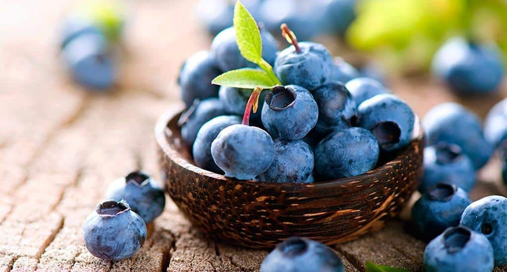 Domiruthperutravel - Blueberry